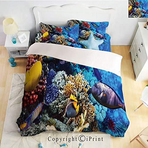 Homenon Deep Pocket Bed Sheet Set,Wild Sea Life Colorful Corals and Fishes in Egyptian Sea Sharm El Sheikh Africa Image,Multicolor,Queen Size,Wrinkle Fade Resistant,4-Piece Set