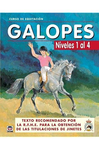 Curso De Equitación. Galopes. Niveles 1 Al 4