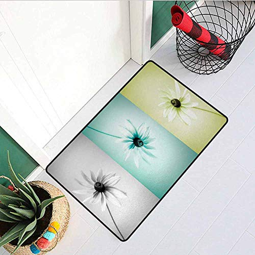 GloriaJohnson Abstract Front Door mat Carpet Daisy Flowers in Different Featured Framed Saturated Artsy Image Machine Washable Door mat W15.7 x L23.6 Inch Turquoise Grey Avocado Green
