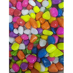 DEVU PARBAT ENTERPRISE Stone Glossy and Decorative Garden and Glass Pebbles (Multicolour)