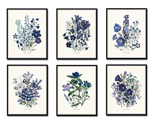 Belle Poster Print - Fleurs de Jardin Botanical Prints Set of 6 Giclee Fine Art Prints - Unframed