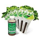 Miracle-Gro AeroGarden Heirloom Salad Greens Seed Pod Kit (6-Pod)