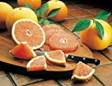 Indian River Ruby Red Grapefruit Grove Fresh 2 Trays, 20lbs