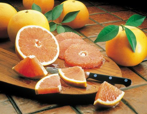 Indian River Ruby Red Grapefruit Grove Fresh 2 Trays, 20lbs by Florida Specialty