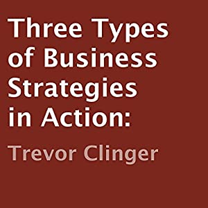 Three Types of Business Strategies in Action Audiobook