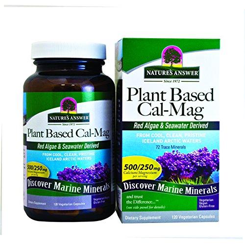 food based calcium - 8