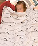 Organic Muslin Baby Toddler Blanket - 10...