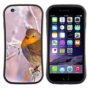 Pulsar iFace Series Tpu silicona Carcasa Funda Case para Apple iPhone 6 / 6S (4.7 INCH) , Arbre Branche Oiseau neige Ice Cold Winter Puffy