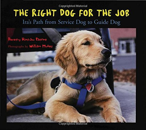 Image result for the right dog for the job journeys