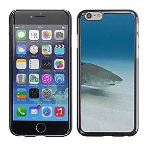 TECHCASE**Cubierta de la caja de protección la piel dura para el ** Apple iPhone 6 ** Shark Underwater Blue Ocean Sea Sand