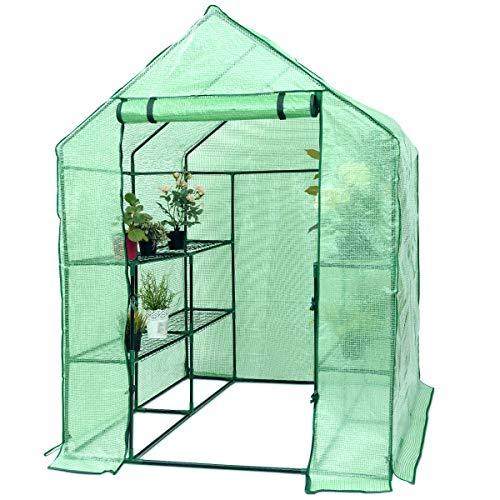 (Superbuy Portable Greenhouse 8 Shelves Mini Walk In Outdoor Green House 2 Tier for Garden Patio Backyard)