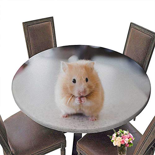 PINAFORE Round Tablecloths Hamster Li fe Dinner, Parties 50