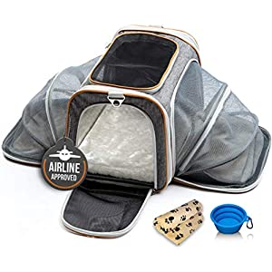 PETYELLA Airline Approved Pet Carrier + Fleece Blanket & Bowl - 100% Lifetime Satisfaction 20
