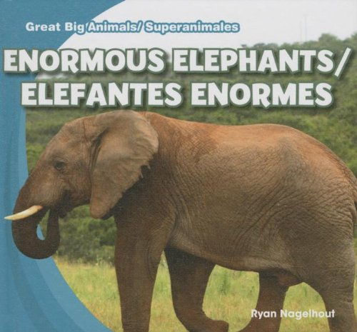 Enormous Elephants / Elefantes enormes (Great Big Animals / Superanimales) (English and Spanish Edition) by Gareth Stevens Leveled Readers
