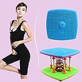 YaeTek Waist Twister,Twisting Waist Body Aerobic Exercise Machine, Health & Fitness Figure Trimmer 7 Spring Bearing Twist Waist Torsion At Home/Office