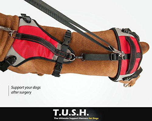 TopDog Health– The Ultimate Support Harness for Dogs (T.U.S.H) – XLarge - Helps Supports Older Dogs Struggling to Get Around or Dogs Recovering from Surgery – Created by a Veterinarian by TopDog Health (Image #5)