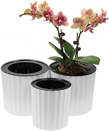 ELIT ORCHID Orchid Pots with Holes Cymbidium Phalaenopsis Orchid Pot Indoor Clear Plastic Vanda Plant Pots Set 5.5 inch