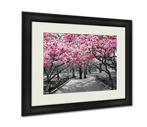 Ashley Framed Prints New York City Pink Blossoms In Black An