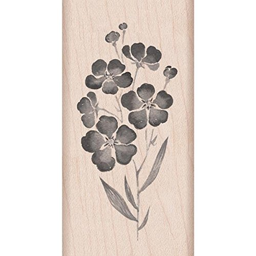 Hero Arts Flowers on a Stem Woodblock Stamp (Stamp Rubber Floral)