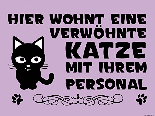 1art1 Gatos - Hier Wohnt Eine Verwöhnte Katze Mit Ihrem Personal ...