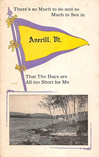 Averill Vermont Scenic Waterfront Pennant Flag Antique Postcard K95348