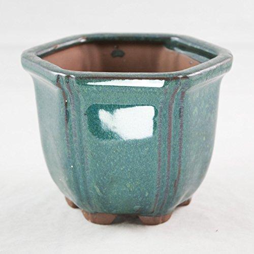 Semi-Cascade, Semi-Deep Hexagon Dark Green Shohin Bonsai Pot 4.25