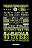 Gym Feel The Burn Dont Stop No Pain No Gain Get Fit No Excuses Workout Motivational Poster 24x36