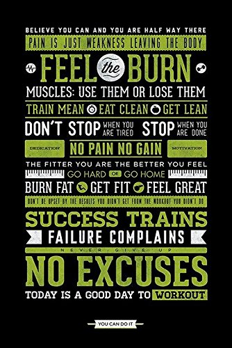 pyramid america gym feel the burn no excuses workout motivational poster 24x36 inch