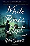 While Paris Slept: A Novel