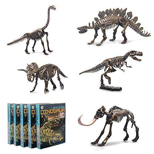 5 Different Dinosaur Skeleton Puzzles Model Set, DIY Skeleton Dinosaur Toys for Kids Ages 6 and Up