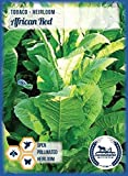 African Red Tobacco Seeds ~100 seeds