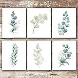 Botanical Prints Wall Art - Eucalyptus Leaves - (Set of 6) - Unframed - 8x10s