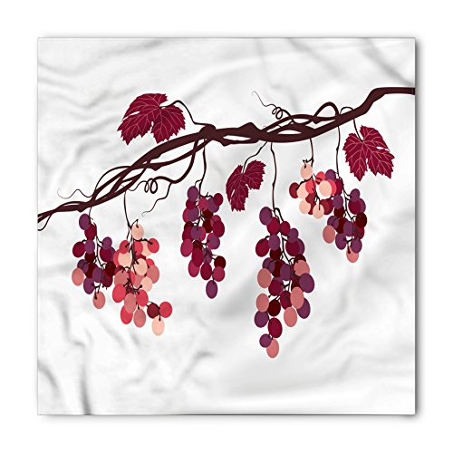Fruit Bandana by Ambesonne, Vine Branch with Colorful Grapes Agriculture Themed Illustration Healthy Food Options, Printed Unisex Bandana Head and Neck Tie Scarf Headband, 22 X 22 Inches, - Grape Illustration Vine