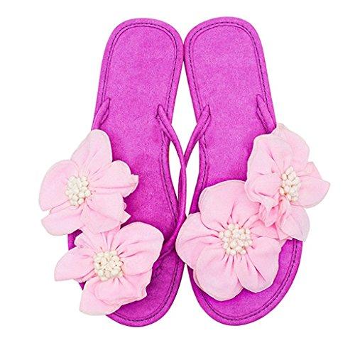 Tongs Femme Slipper Chaussures 40 Violet Loisirs en Plage Lumineux EU La on Filles pour Clip pour Été Dames Slip Daim avec en des Plat Toe Sandale Balnéaire Couleur 8 Violet US Talon Fleurs Taille rA7X1rp
