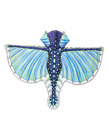 HearthSong® Hooded Dragon Wings with Finger Loops - Double Sided Printed Fabric with 3D Details - Dress Up Costume Accessories for Kids - Approx. 47'' W - Frost Blue]()