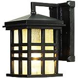 "Trans Globe Lighting 4635 BK Outdoor Huntington 10"" Wall Lantern, Black"