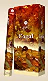 Fragrancia Flute Hexa Incense Sticks - Copal