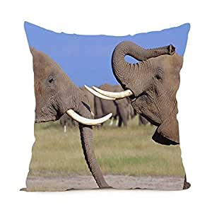 CCTUSGSH Cute Elephant Cotton Throw Pillow Case Cushion Cover 16 X 16 Inches One Side