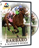 Barbaro - A Nation's Horse