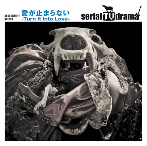 AI GA TOMARANAI -TURN IT INTO LOVE-(CD+DVD)(ltd.ed.)