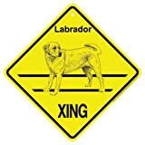 Labrador (yellow) Xing caution Crossing Sign dog Gift