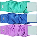 wegreeco Washable Dog Diapers - Washable Male Dog Belly Wrap- Pack of 3 - (Blue,Green,Purple,Small)