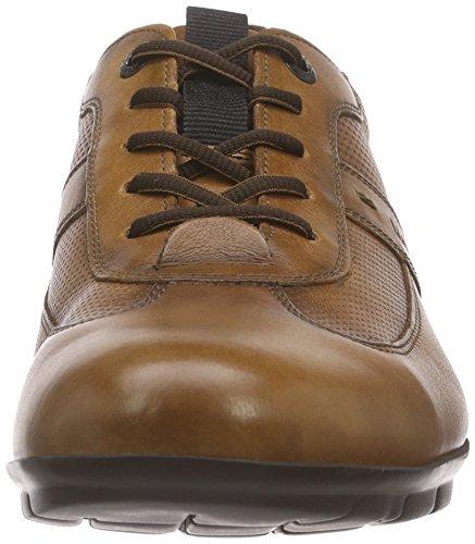 LLOYD Kenia 4 Sneaker Braun Herren Antonio Cigar ARvrqv0zw
