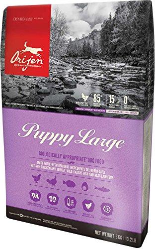 Orijen Large Breed Puppy - 28.6lb