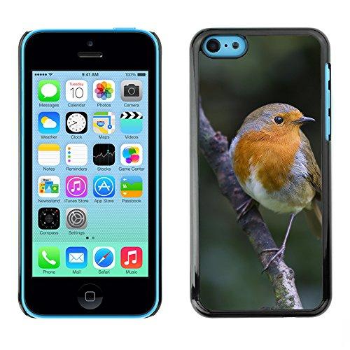 Premio Sottile Slim Cassa Custodia Case Cover Shell // F00015006 oiseau // Apple iPhone 5C
