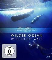 Wilder Ozean - Im Reich der Wale