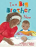 img - for I'm A Big Brother Now book / textbook / text book