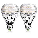 200-150 Watt Equivalent A21 22W LED Light Bulbs-3000 lumens 3000K Warm White, CRI 80+, E26 Medium Screw Base, Non-dimmable Ceramic Bulbs for Home Lighting, SANSI (2 Pack)