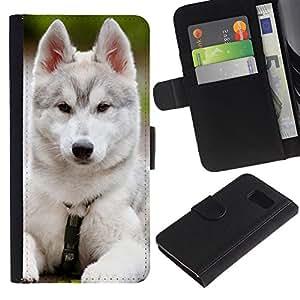 eJoy---La carpeta del tirón la caja de cuero de alta calidad de la PU Caso protector - Samsung Galaxy S6 - --Siberian Husky Malamute White Puppy Dog
