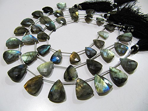 AAA Quality Natural Labradorite Blue Flashy Beads , Trillion Shape Briolette Beads , Strand 9 Inches Long , Beads are 16 to 18 mm Long